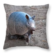Posing Armadillo Throw Pillow