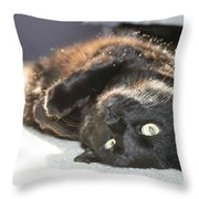 Posing Black At Throw Pillow