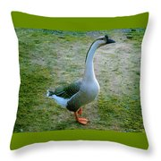 Posing Goose Throw Pillow