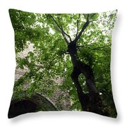 Positano Arch Throw Pillow