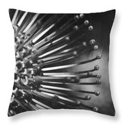 Possibility Is The Secret Heart Of Time Throw Pillow by Sharon Mau