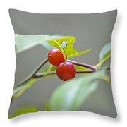Possum Haw Berries Throw Pillow