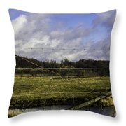 Post By Marshland Throw Pillow