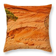 Postcard From Home Throw Pillow