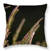 Poster Grass Throw Pillow