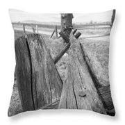 Posts Throw Pillow
