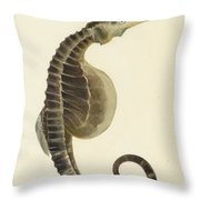 Pot Bellied Seahorse. Hippocampus Abdominalis Throw Pillow