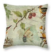 Pot-pourri Throw Pillow
