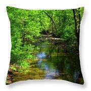 Potamac River In Maryland Throw Pillow