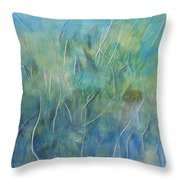 Potential Field Throw Pillow
