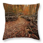 Potomac Heritage Trail Throw Pillow
