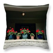 Pots In The Window Throw Pillow