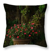 Potted Flowers Throw Pillow