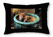 Potted Puppies Throw Pillow