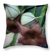 Potted Starfish Throw Pillow