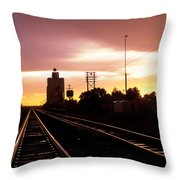 Potter Tracks Throw Pillow