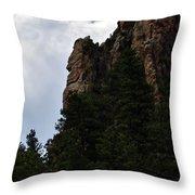 Poudre Canyon Throw Pillow