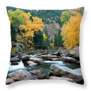 Poudre Gold Throw Pillow