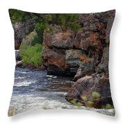 Poudre River 6 Throw Pillow