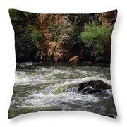 Poudre River Throw Pillow