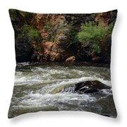 Poudre River 2 Throw Pillow