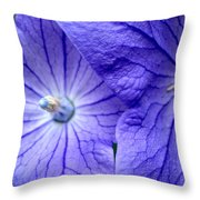 Powder 2 Throw Pillow