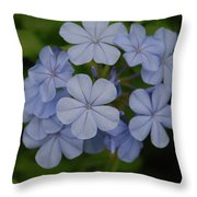 Powder Blue Flowers Throw Pillow