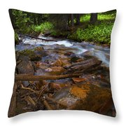 Powerful Spring Runoff Throw Pillow