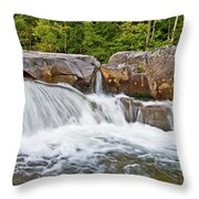 Powerful Statement Throw Pillow