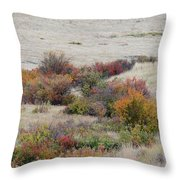 Prairie Beauty Throw Pillow