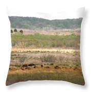 Prairie Bison Throw Pillow