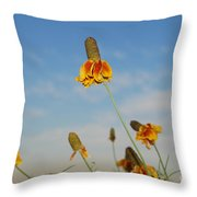 Prairie Cone Flowers Against Blue Sky Horizontal Number Three Throw Pillow