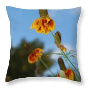 Prairie Cone Flowers Against Blue Sky Vertical Number One Throw Pillow
