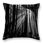 Prairie Creek Redwwod State Park  Throw Pillow