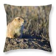Prairie Dog Watchful Eye Throw Pillow