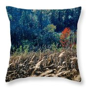 Prairie Edge Throw Pillow