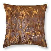Prairie Grass Blades Throw Pillow