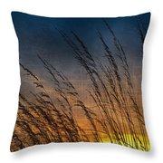 Prairie Grass Sunset Patterns Throw Pillow