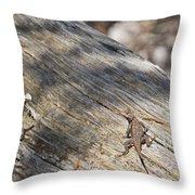 Prairie Lizard _ 1a Throw Pillow