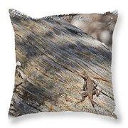 Prairie Lizard _ 1b Throw Pillow