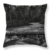 Prairie River Crossing Log Square Format Throw Pillow