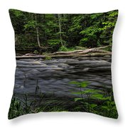 Prairie River Log Jam Throw Pillow