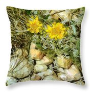 Prairie Rock Garden Throw Pillow