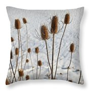 Prairie Seedheads Throw Pillow