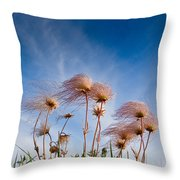 Prairie Smoke Throw Pillow
