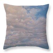 Prairie Trail Throw Pillow