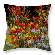 Prairie Wildflowers 2 Throw Pillow