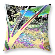 Prana Throw Pillow by Eikoni Images