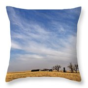 Prarie House Throw Pillow