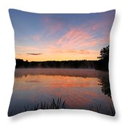 Prat Pond Morning Throw Pillow